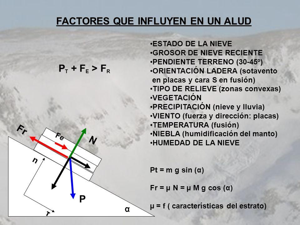 TUC DE SALANA (19/01/02) En rojo se indica la zona donde se desencadenó el alud.