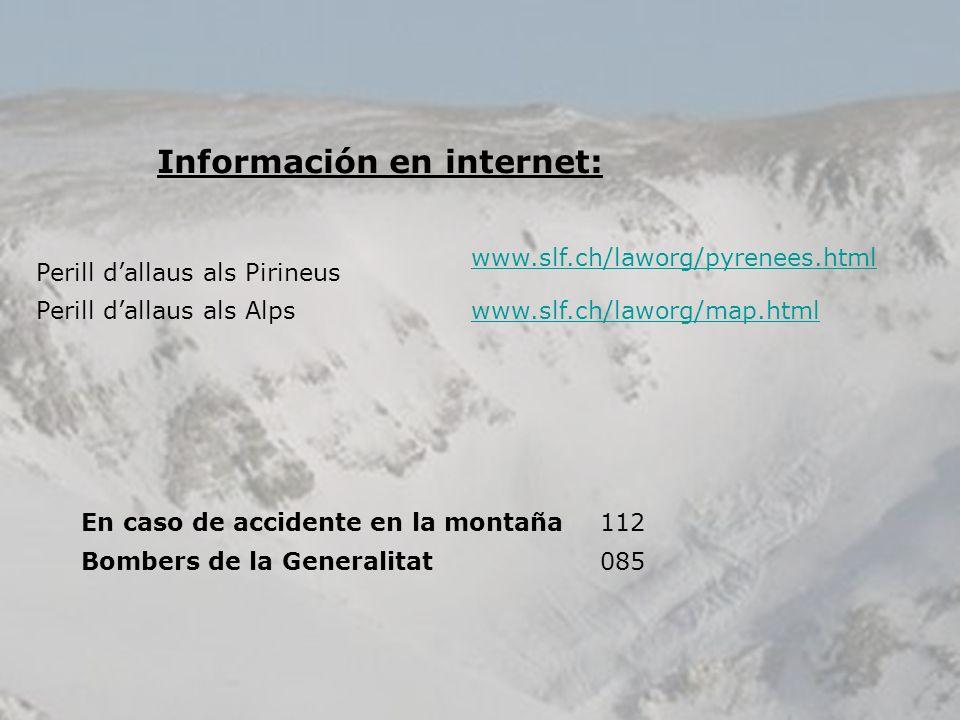 Información en internet: Perill dallaus als Pirineus www.slf.ch/laworg/pyrenees.html Perill dallaus als Alpswww.slf.ch/laworg/map.html En caso de acci