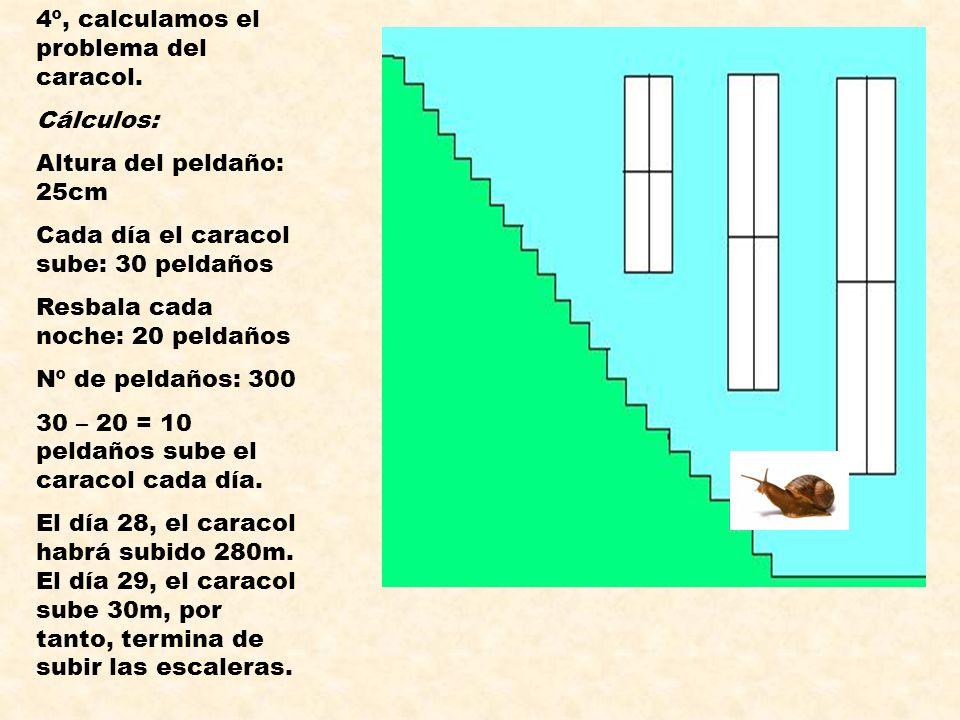 4º, calculamos el problema del caracol. Cálculos: Altura del peldaño: 25cm Cada día el caracol sube: 30 peldaños Resbala cada noche: 20 peldaños Nº de