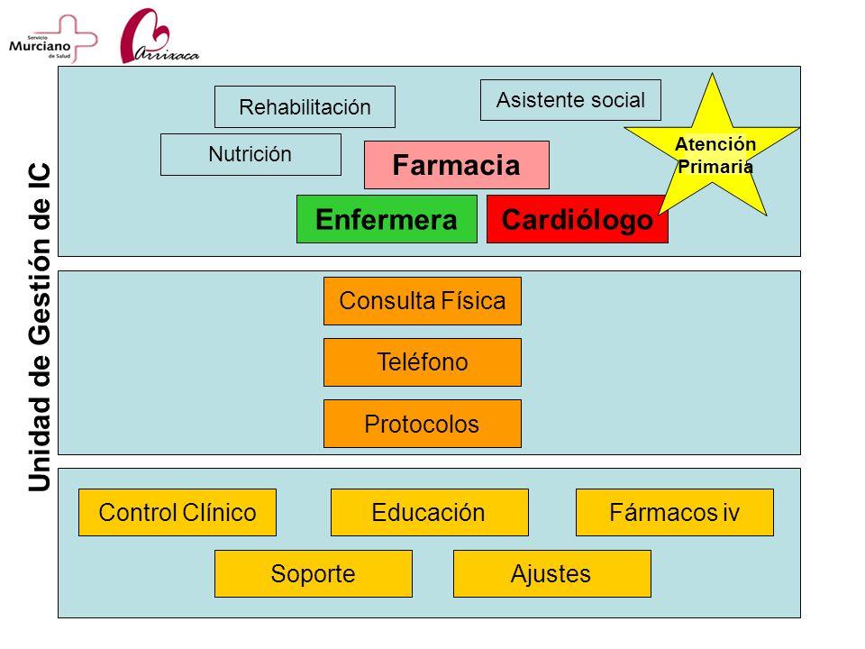 Control ClínicoFármacos iv Consulta Física Protocolos Teléfono Educación SoporteAjustes Unidad de Gestión de IC CardiólogoEnfermera Nutrición Farmacia
