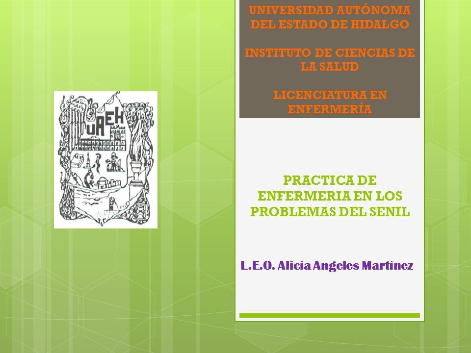 UNIVERSIDAD AUTÓNOMA DEL ESTADO DE HIDALGO INSTITUTO DE CIENCIAS DE LA SALUD LICENCIATURA EN ENFERMERÍA PRACTICA DE ENFERMERIA EN LOS PROBLEMAS DEL SE