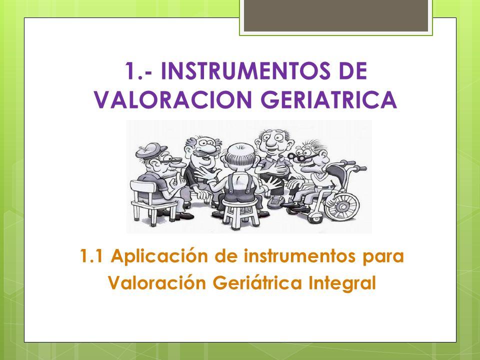 1.1 Aplicación de instrumentos para Valoración Geriátrica Integral 1.- INSTRUMENTOS DE VALORACION GERIATRICA