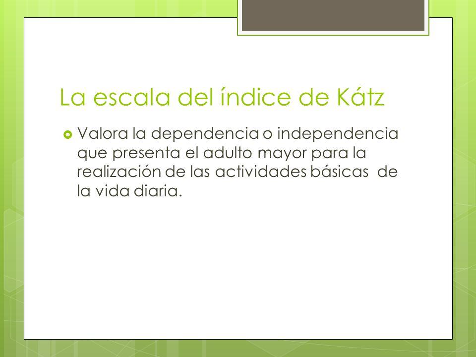La escala del índice de Kátz Valora la dependencia o independencia que presenta el adulto mayor para la realización de las actividades básicas de la v