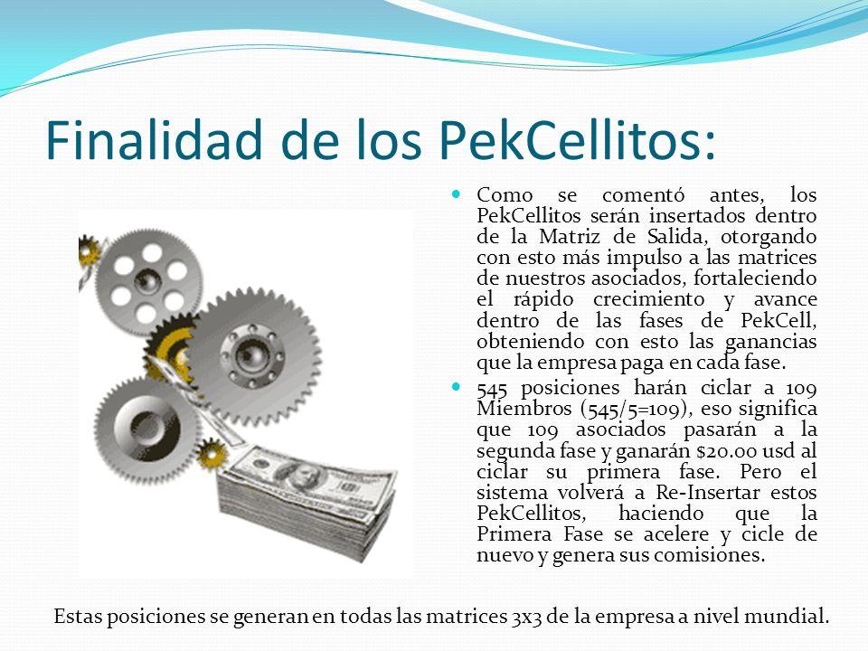 Finalidad de los PekCellitos: Como se comentó antes, los PekCellitos serán insertados dentro de la Matriz de Salida, otorgando con esto más impulso a
