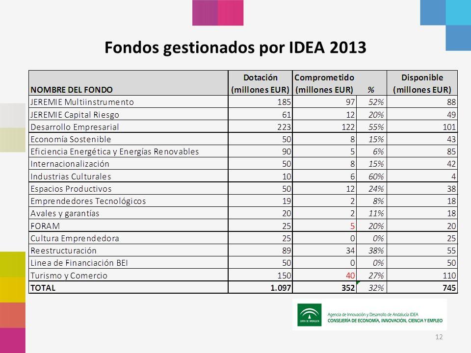 12 Fondos gestionados por IDEA 2013
