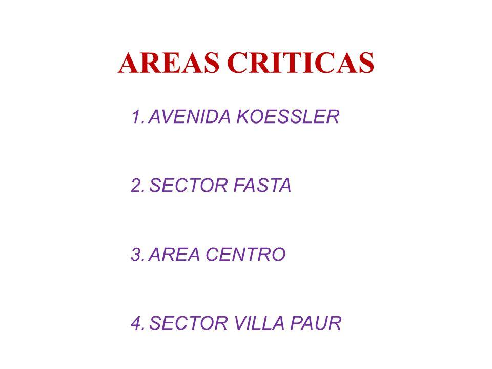 AREAS CRITICAS 1.AVENIDA KOESSLER 2.SECTOR FASTA 3.AREA CENTRO 4.SECTOR VILLA PAUR