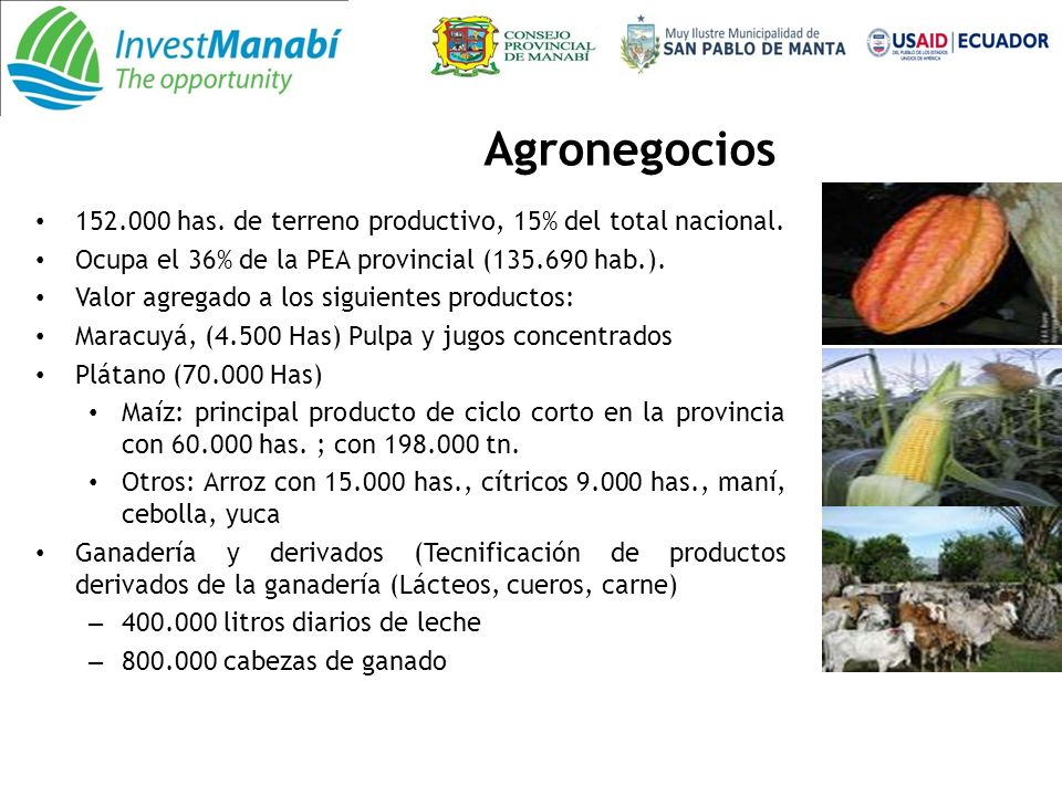 Agronegocios 152.000 has.de terreno productivo, 15% del total nacional.