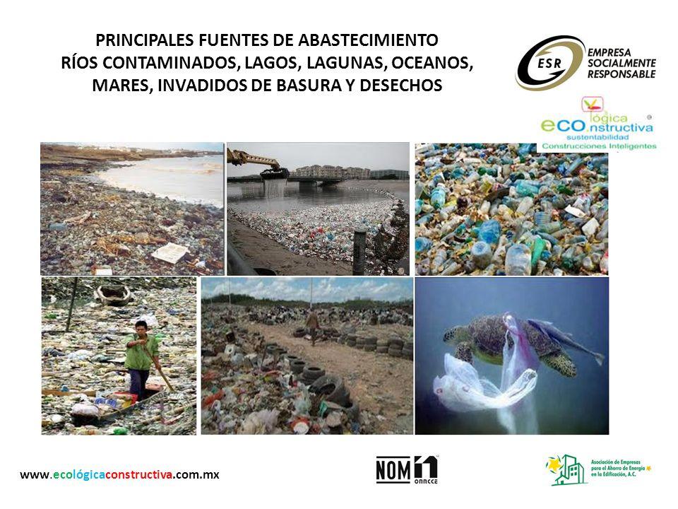 PRINCIPALES FUENTES DE ABASTECIMIENTO RÍOS CONTAMINADOS, LAGOS, LAGUNAS, OCEANOS, MARES, INVADIDOS DE BASURA Y DESECHOS www.ecológicaconstructiva.com.