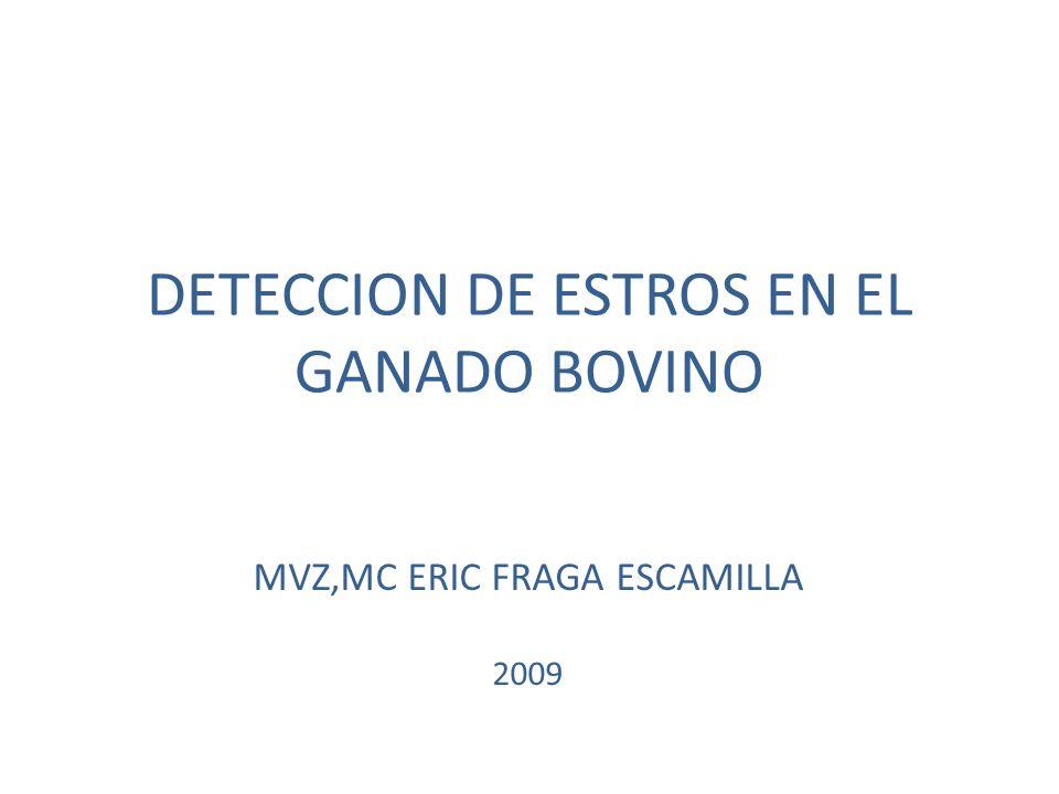 DETECCION DE ESTROS EN EL GANADO BOVINO MVZ,MC ERIC FRAGA ESCAMILLA 2009