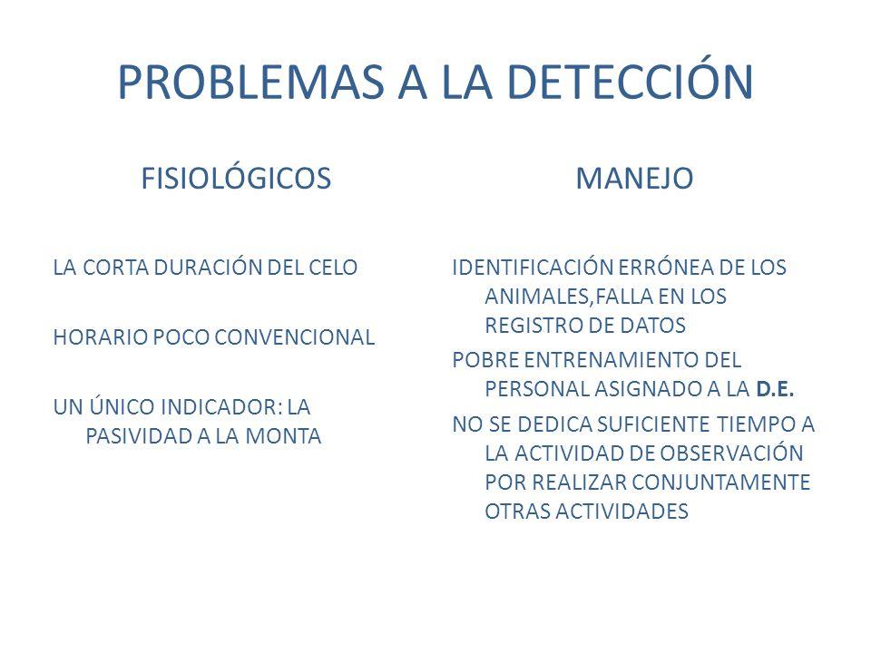PROBLEMAS A LA DETECCIÓN FISIOLÓGICOS LA CORTA DURACIÓN DEL CELO HORARIO POCO CONVENCIONAL UN ÚNICO INDICADOR: LA PASIVIDAD A LA MONTA MANEJO IDENTIFICACIÓN ERRÓNEA DE LOS ANIMALES,FALLA EN LOS REGISTRO DE DATOS POBRE ENTRENAMIENTO DEL PERSONAL ASIGNADO A LA D.E.