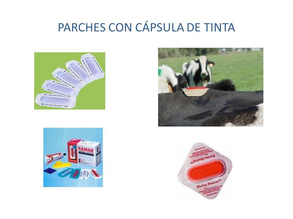 PARCHES CON CÁPSULA DE TINTA