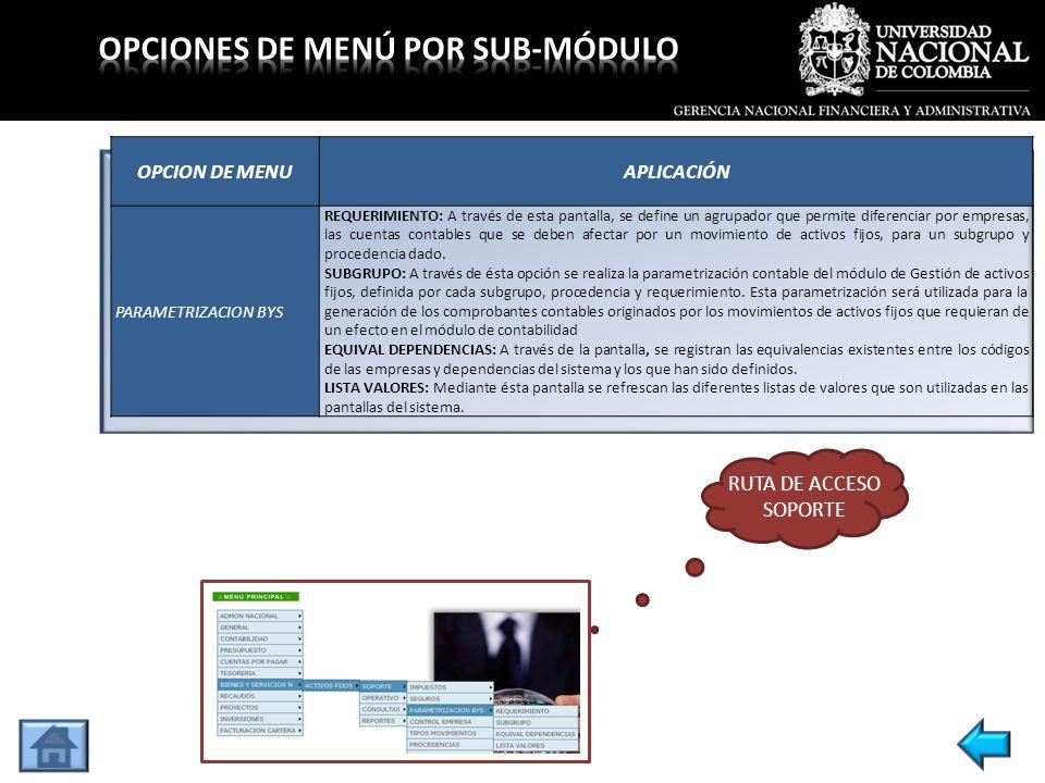 OPCION DE MENUAPLICACIÓN PARAMETRIZACION BYS REQUERIMIENTO: A través de esta pantalla, se define un agrupador que permite diferenciar por empresas, la