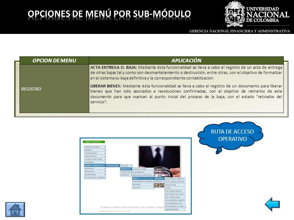 OPCION DE MENUAPLICACIÓN REGISTRO ACTA ENTREGA O. BAJA: Mediante ésta funcionalidad se lleva a cabo el registro de un acta de entrega de otras bajas t