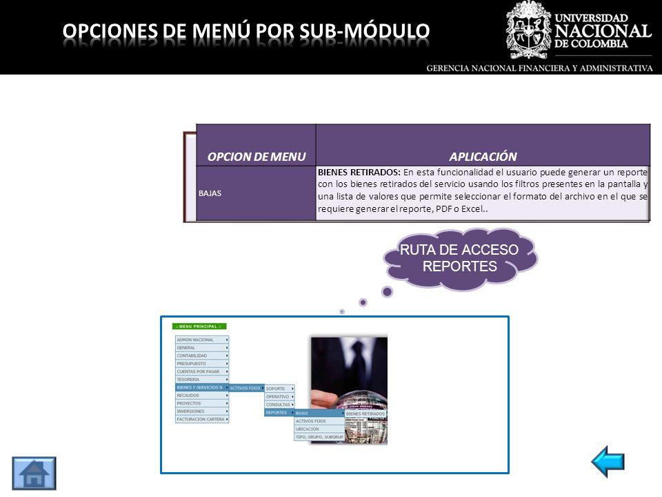 OPCION DE MENUAPLICACIÓN BAJAS BIENES RETIRADOS: En esta funcionalidad el usuario puede generar un reporte con los bienes retirados del servicio usand