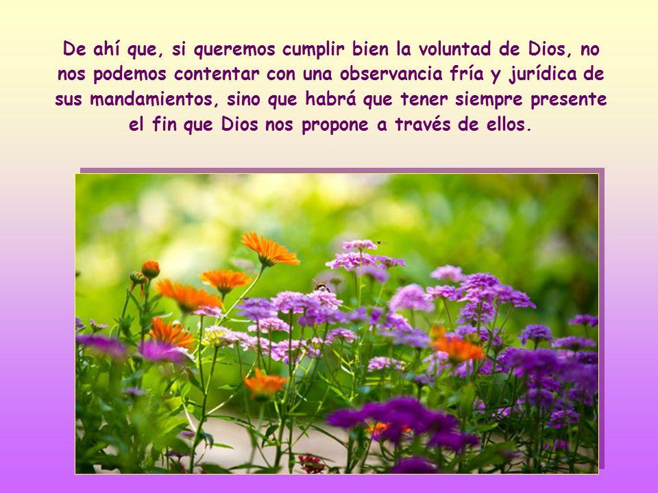 En segundo lugar, nos dice que el amor mutuo es el motor, el alma y el fin al que tienden todos los mandamientos.