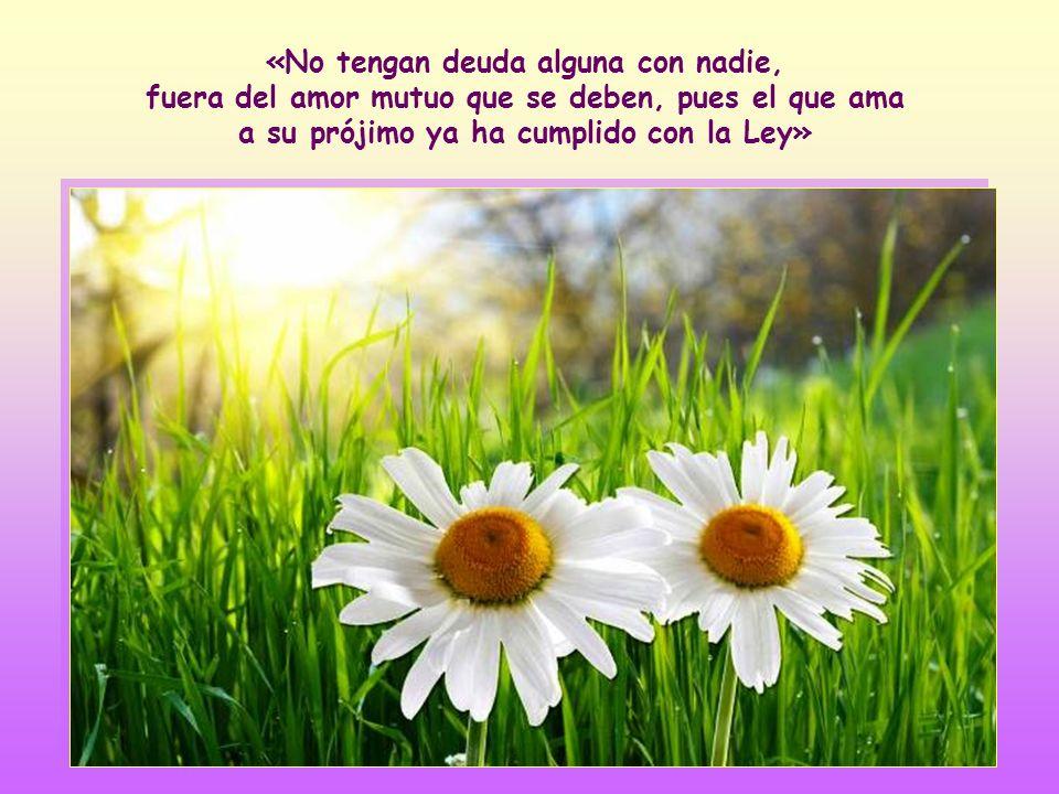 El amor mutuo en sus distintas expresiones: generosidad, cuidado, confianza, aprecio recíproco, sinceridad, etc. (cf Rom 12, 9-12).