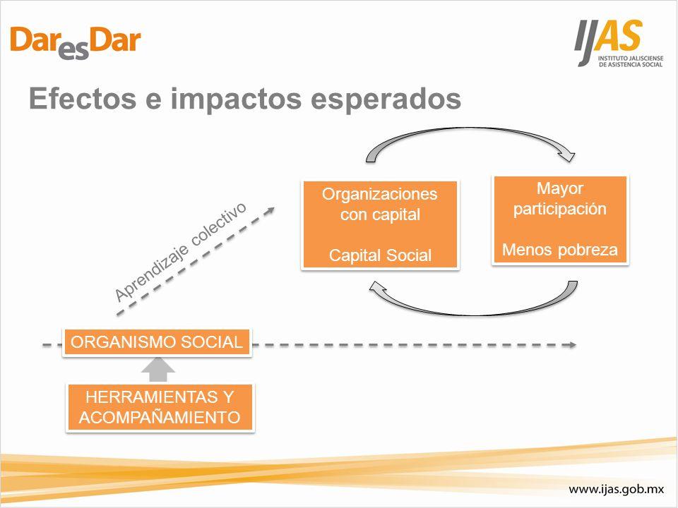 Efectos e impactos esperados HERRAMIENTAS Y ACOMPAÑAMIENTO ORGANISMO SOCIAL Organizaciones con capital Capital Social Organizaciones con capital Capit