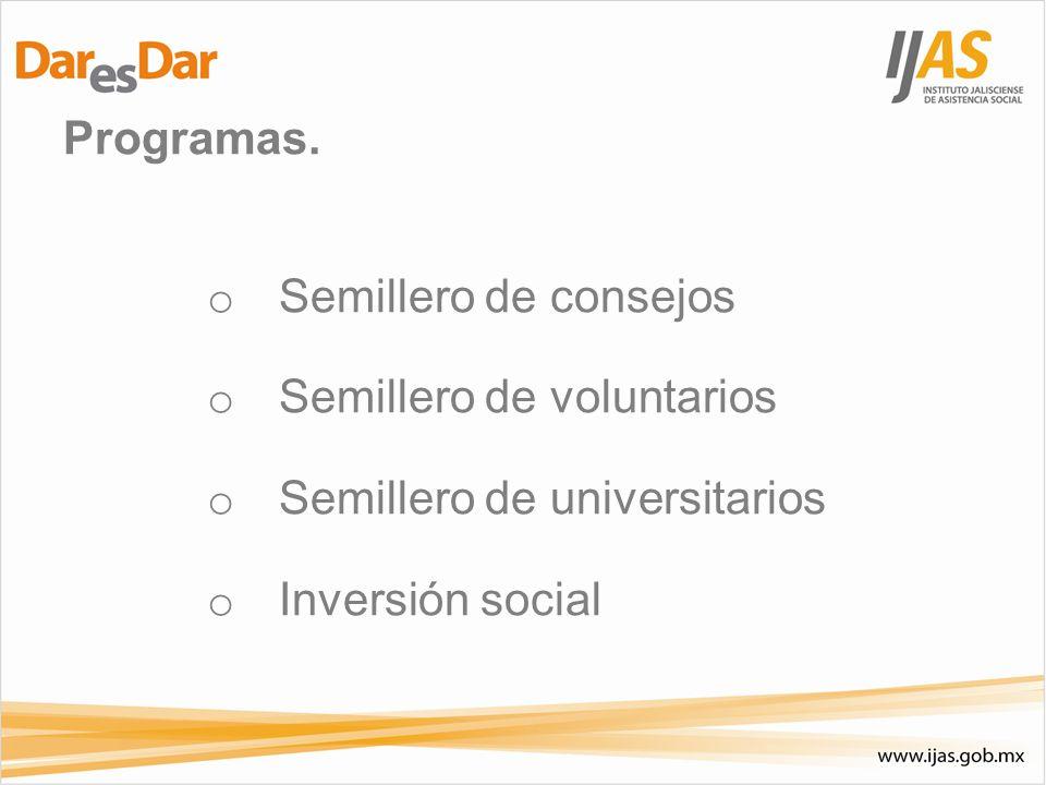 Programas. o Semillero de consejos o Semillero de voluntarios o Semillero de universitarios o Inversión social
