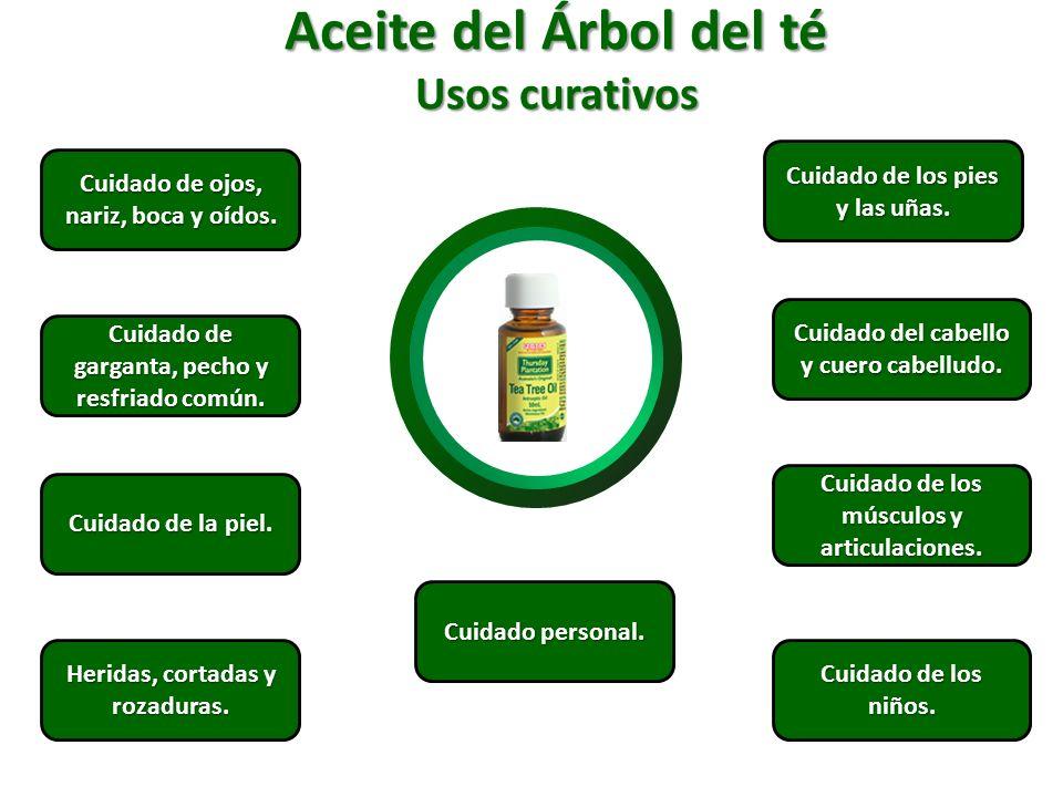 Aceite del Árbol del té Usos curativos Cuidado de ojos, nariz, boca y oídos. Cuidado de ojos, nariz, boca y oídos. Cuidado de garganta, pecho y resfri