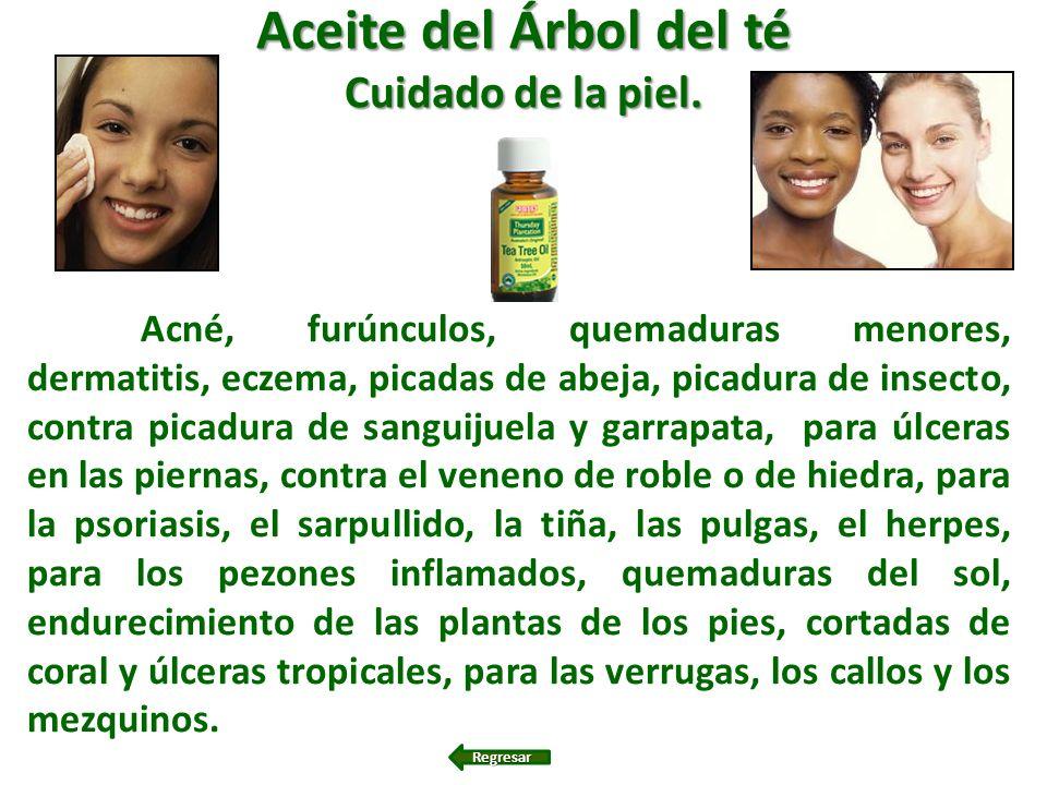 Aceite del Árbol del té Cuidado de la piel. Acné, furúnculos, quemaduras menores, dermatitis, eczema, picadas de abeja, picadura de insecto, contra pi