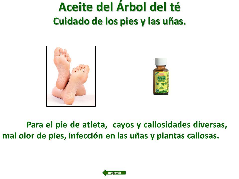 Aceite del Árbol del té Cuidado de los pies y las uñas. Para el pie de atleta, cayos y callosidades diversas, mal olor de pies, infección en las uñas