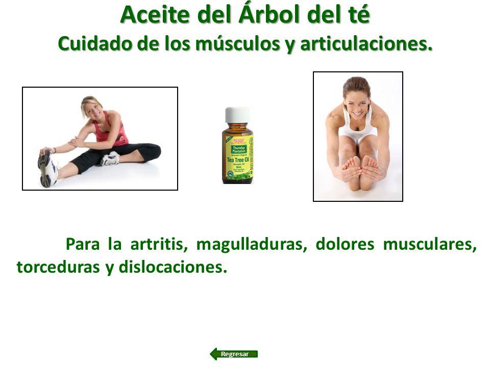 Aceite del Árbol del té Cuidado de los músculos y articulaciones. Para la artritis, magulladuras, dolores musculares, torceduras y dislocaciones. Regr