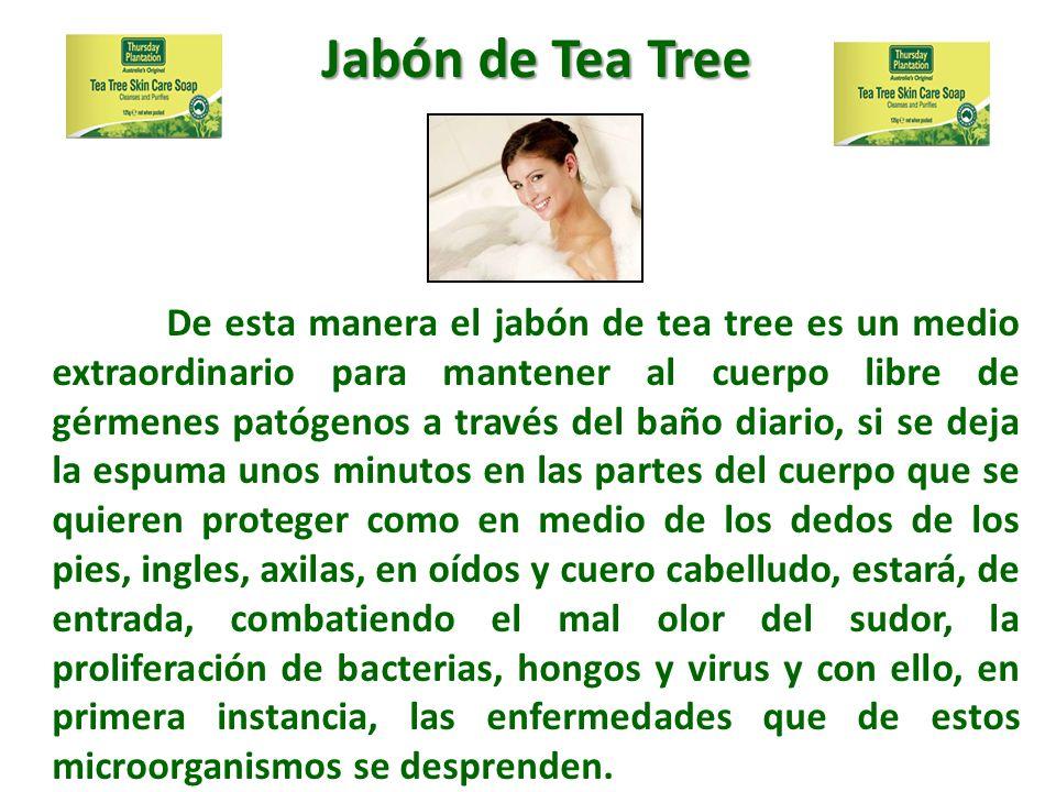 De esta manera el jabón de tea tree es un medio extraordinario para mantener al cuerpo libre de gérmenes patógenos a través del baño diario, si se dej