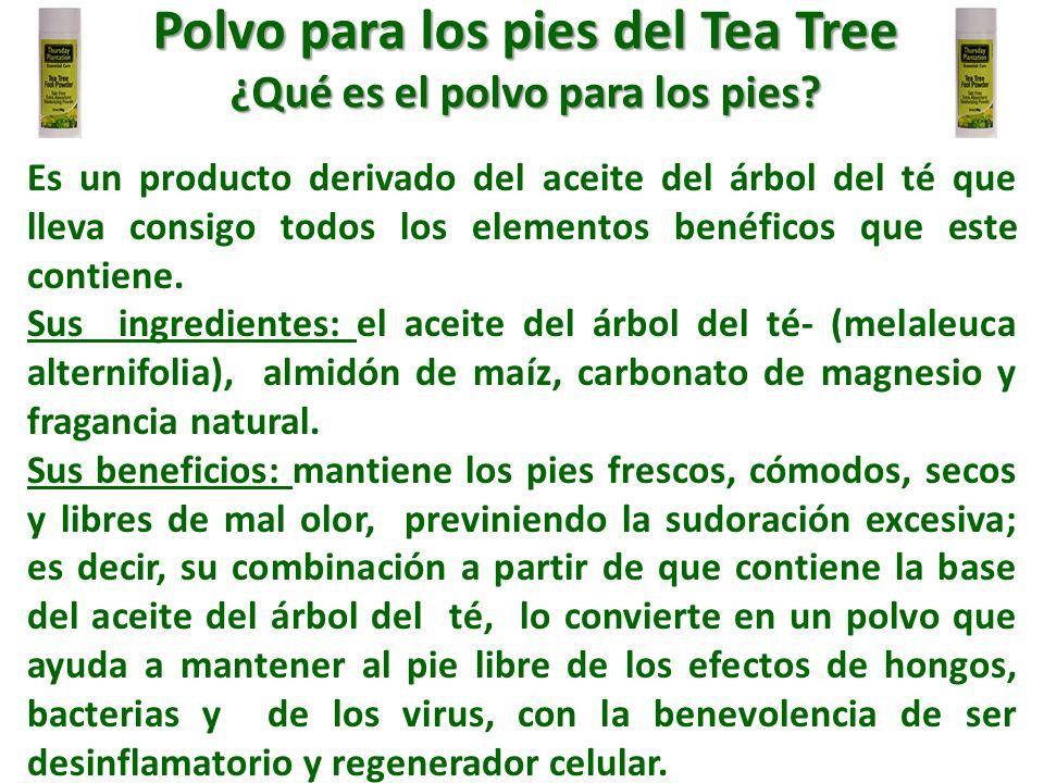 Es un producto derivado del aceite del árbol del té que lleva consigo todos los elementos benéficos que este contiene. Sus ingredientes: el aceite del