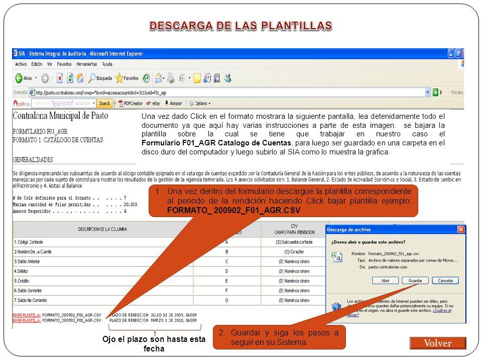 Una vez dado Click en el formato mostrara la siguiente pantalla, lea detenidamente todo el documento ya que aquí hay varias instrucciones a parte de esta imagen.