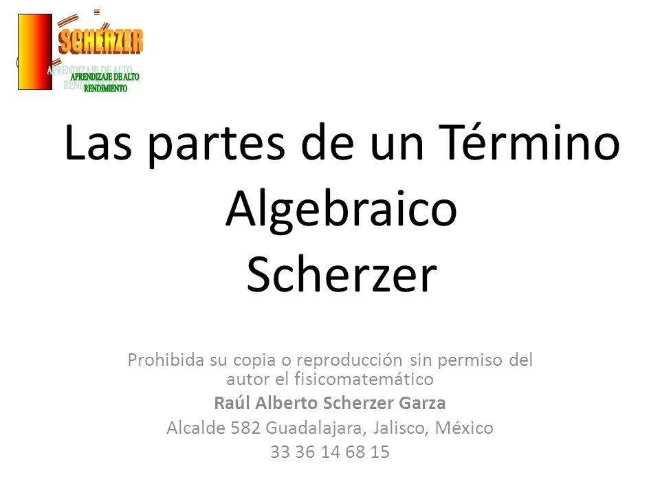 Las partes de un Término Algebraico Scherzer Prohibida su copia o reproducción sin permiso del autor el fisicomatemático Raúl Alberto Scherzer Garza A