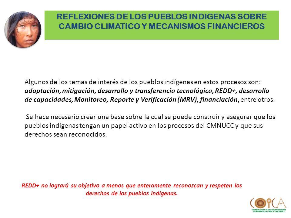 Algunos de los temas de interés de los pueblos indígenas en estos procesos son: adaptación, mitigación, desarrollo y transferencia tecnológica, REDD+,
