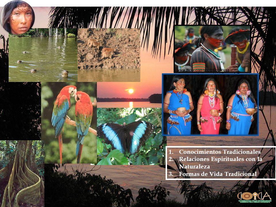 www.flickr.com/photos/powless 1.Conocimientos Tradicionales 2.Relaciones Espirituales con la Naturaleza 3.Formas de Vida Tradicional