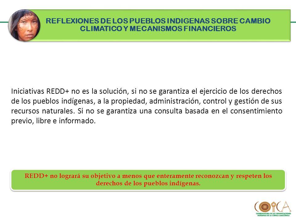 Iniciativas REDD+ no es la solución, si no se garantiza el ejercicio de los derechos de los pueblos indígenas, a la propiedad, administración, control