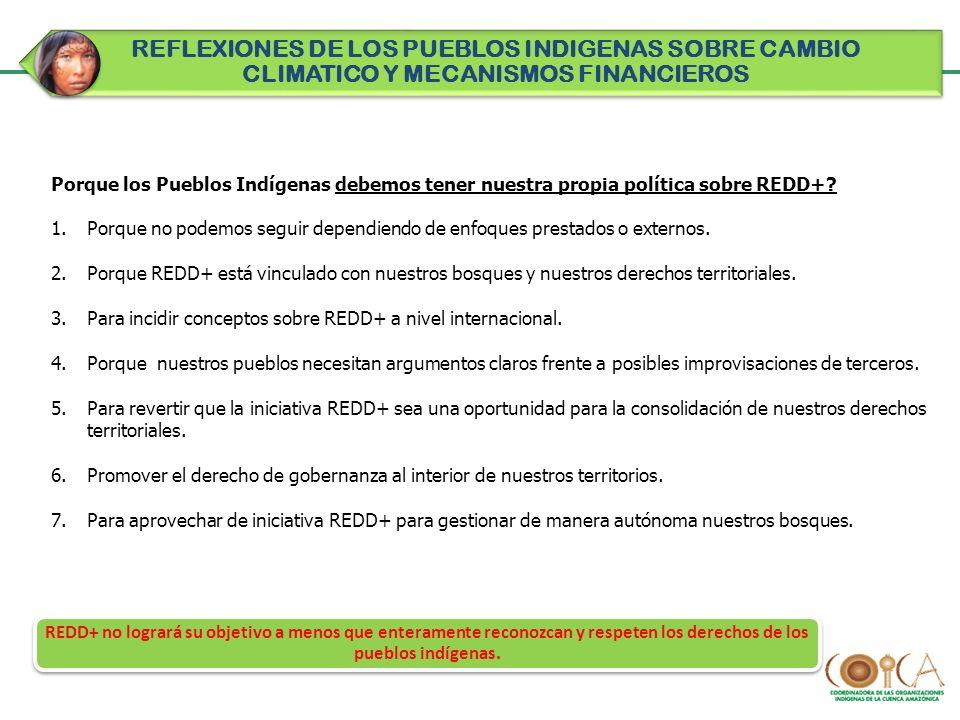 Porque los Pueblos Indígenas debemos tener nuestra propia política sobre REDD+? 1.Porque no podemos seguir dependiendo de enfoques prestados o externo