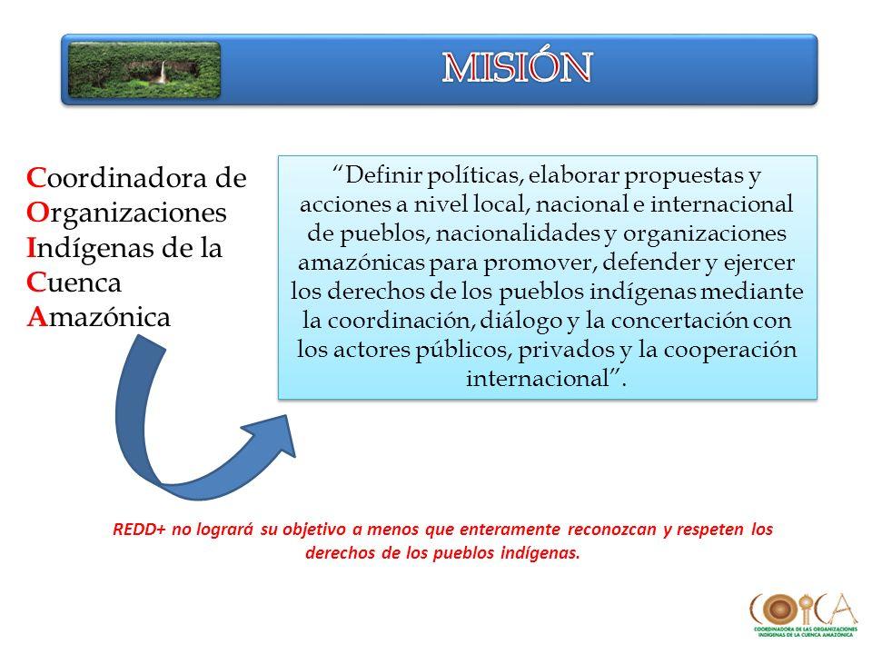 Definir políticas, elaborar propuestas y acciones a nivel local, nacional e internacional de pueblos, nacionalidades y organizaciones amazónicas para