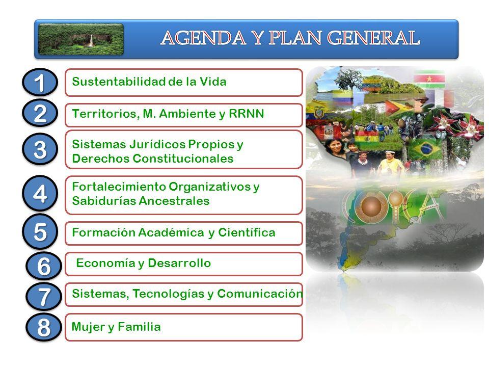 Sustentabilidad de la Vida Territorios, M. Ambiente y RRNN Sistemas Jurídicos Propios y Derechos Constitucionales Fortalecimiento Organizativos y Sabi