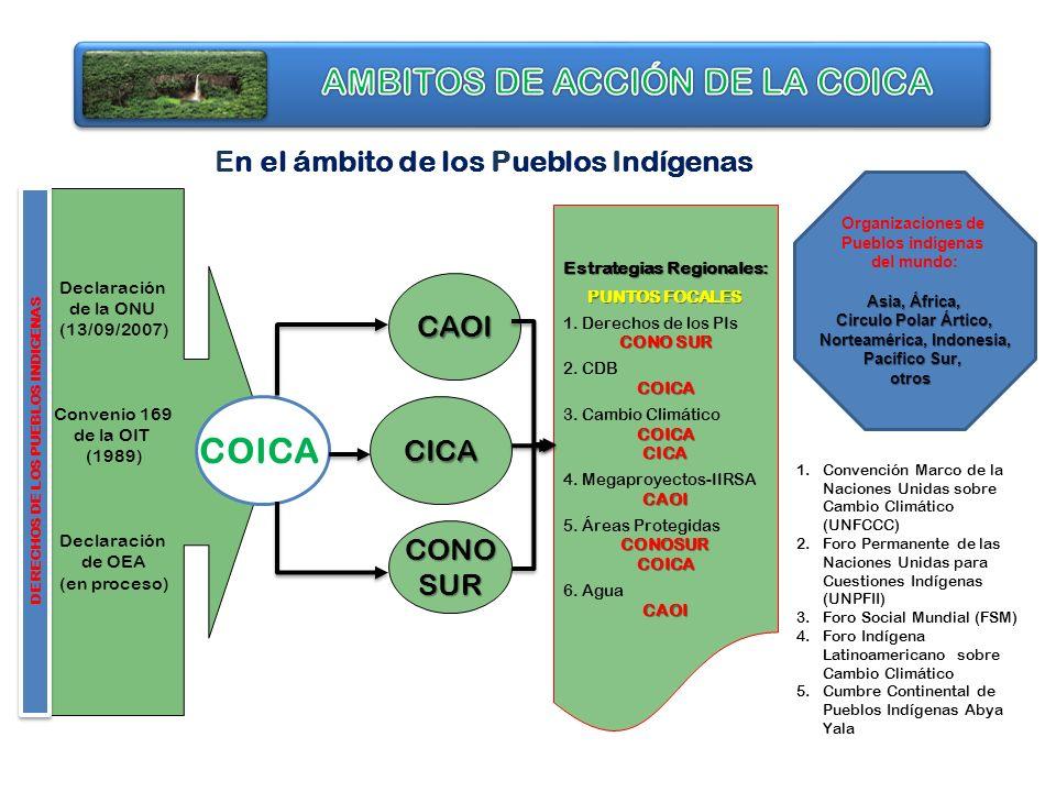 Declaración de la ONU (13/09/2007) Convenio 169 de la OIT (1989) Declaración de OEA (en proceso) DERECHOS DE LOS PUEBLOS INDIGENAS COICA CAOI CICA CON
