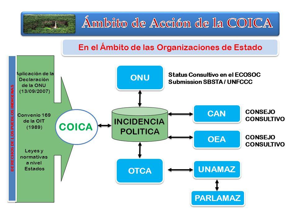 Aplicación de la Declaración de la ONU (13/09/2007) Convenio 169 de la OIT (1989) Leyes y normativas a nivel Estados DERECHOS DE LOS PUEBLOS INDIGENAS