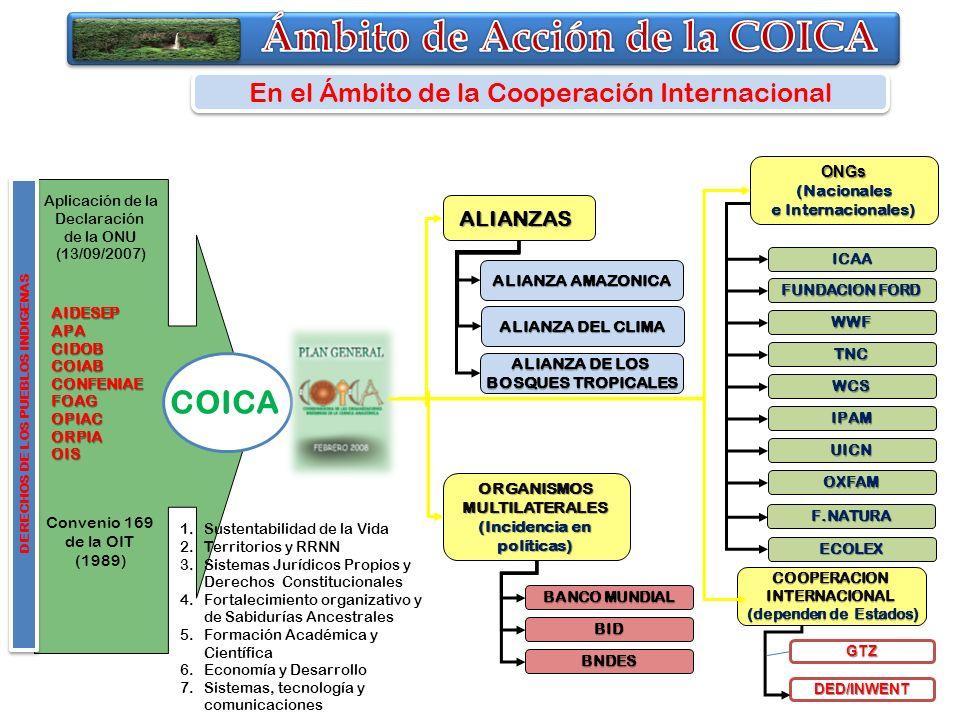 Aplicación de la Declaración de la ONU (13/09/2007) Convenio 169 de la OIT (1989) DERECHOS DE LOS PUEBLOS INDIGENAS COICA En el Ámbito de la Cooperaci