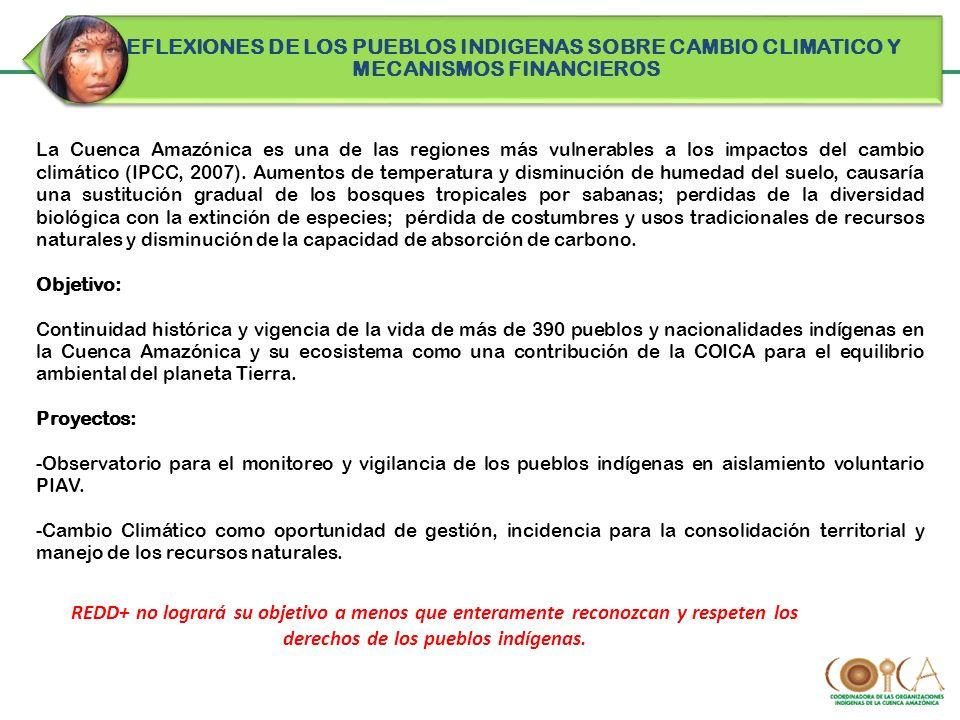 La Cuenca Amazónica es una de las regiones más vulnerables a los impactos del cambio climático (IPCC, 2007). Aumentos de temperatura y disminución de