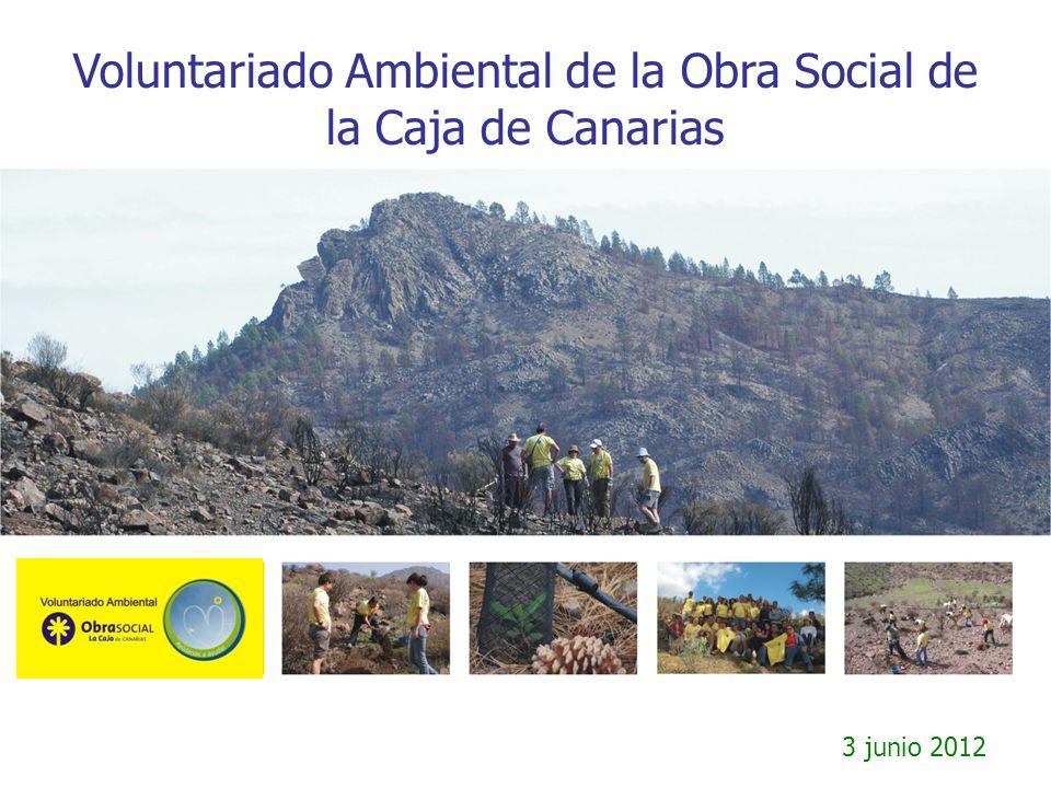 Actuación 3 de junio de 2012 Mantenimiento y riego en la montaña de Firgas, catalogación de pinos singulares en el Barranco de los Palos y restauración de bebederos naturales en Inagua.