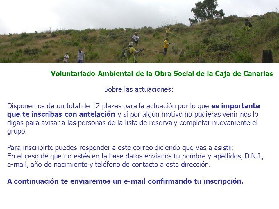 Voluntariado Ambiental de la Obra Social de la Caja de Canarias El horario es: salida desde la Fuente Luminosa a las 8:30 y llegada al mismo sitio entre las 16:00 y las 17:00 horas.