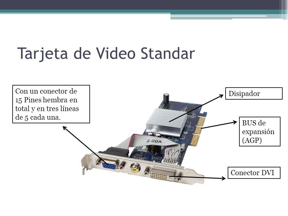 Tarjeta de Video Standar Disipador BUS de expansión (AGP) Conector DVI Con un conector de 15 Pines hembra en total y en tres líneas de 5 cada una.