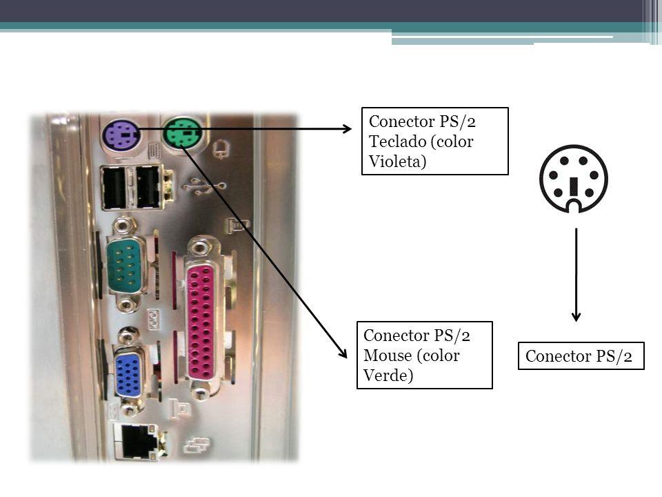 Conector PS/2 Teclado (color Violeta) Conector PS/2 Mouse (color Verde) Conector PS/2