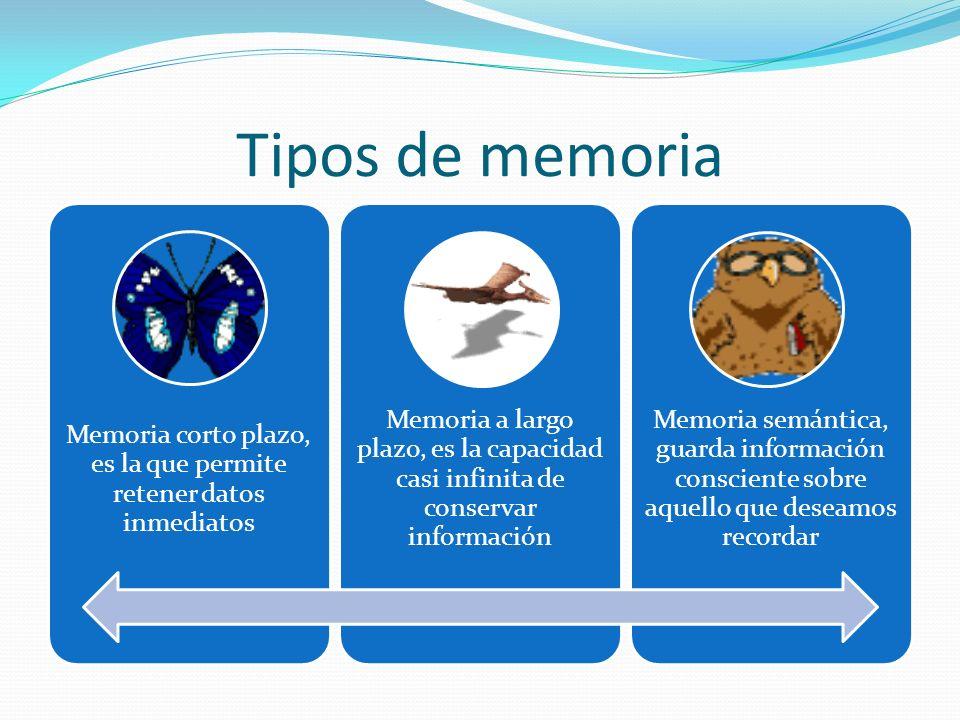 Tipos de memoria Memoria corto plazo, es la que permite retener datos inmediatos Memoria a largo plazo, es la capacidad casi infinita de conservar información Memoria semántica, guarda información consciente sobre aquello que deseamos recordar
