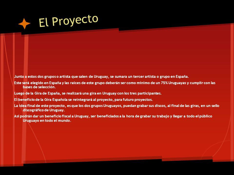 Los datos de comunicación Director del proyecto: Sr.