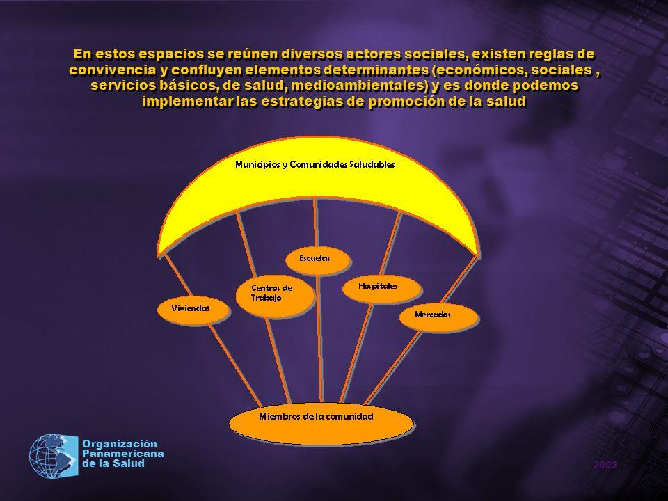 2003 Organización Panamericana de la Salud En estos espacios se reúnen diversos actores sociales, existen reglas de convivencia y confluyen elementos