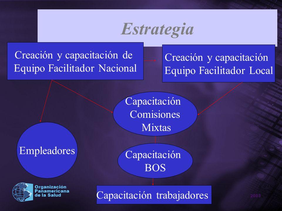 2003 Organización Panamericana de la Salud Estrategia Creación y capacitación de Equipo Facilitador Nacional Creación y capacitación Equipo Facilitado