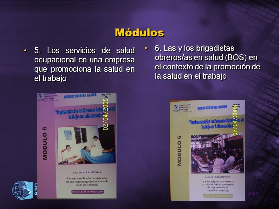 2003 Organización Panamericana de la Salud Módulos 5. Los servicios de salud ocupacional en una empresa que promociona la salud en el trabajo 6. Las y