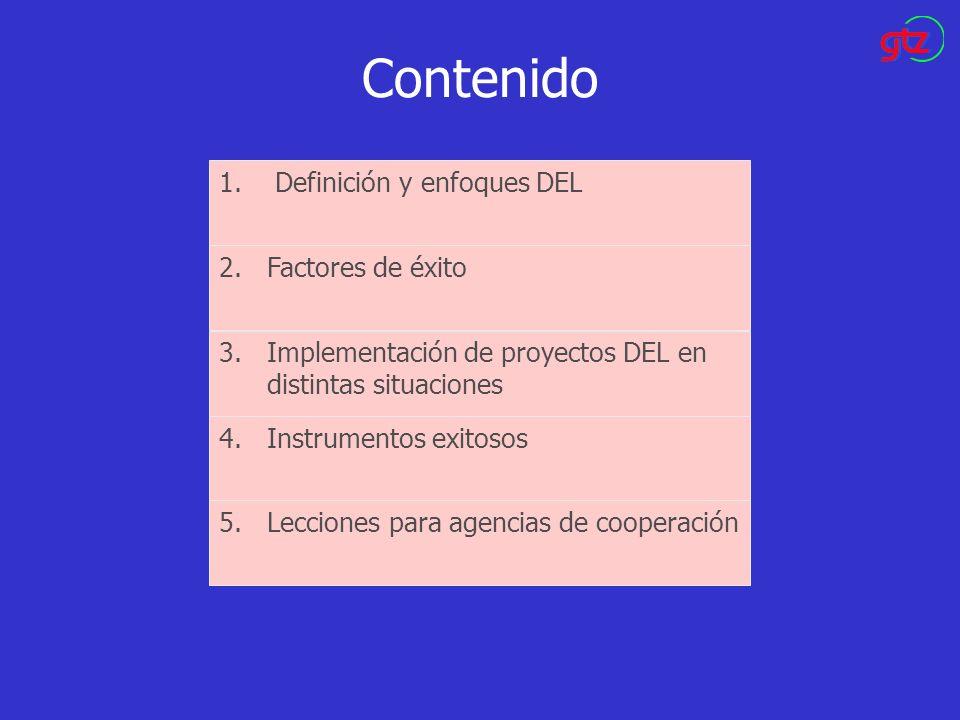 Contenido 1.Definición y enfoques DEL 2.Factores de éxito 3.Implementación de proyectos DEL en distintas situaciones 4.Instrumentos exitosos 5.Leccion
